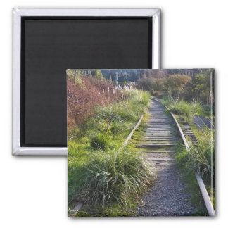 Weathered Tracks of Arcata, CA #7: Relic 2 Inch Square Magnet