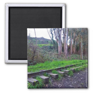 Weathered Tracks of Arcata, CA #8: Into the Woods 2 Inch Square Magnet