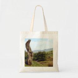 Weathered tree in UK Peak District bag