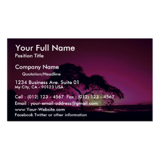 Weaver bird nests in silhouetted tree, Arusha Nati Business Card Templates