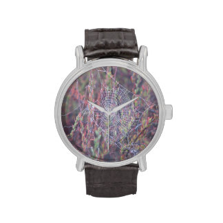 Web brumoso reloj de mano