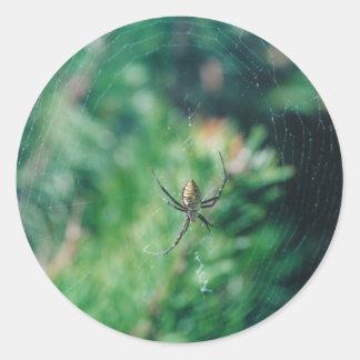 Web Crawler - stickers
