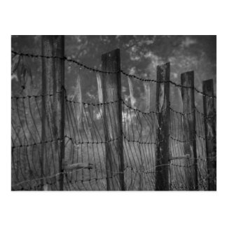 Web cubiertos de rocio en la postal del alambre de