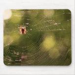 Web de araña alfombrillas de ratones