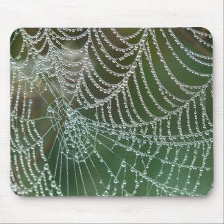 Web de araña con rocío alfombrilla de ratón