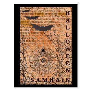 Web de araña de Halloween Samhain Tarjeta Postal