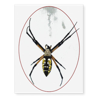 Web de araña del orbe tatuajes temporales