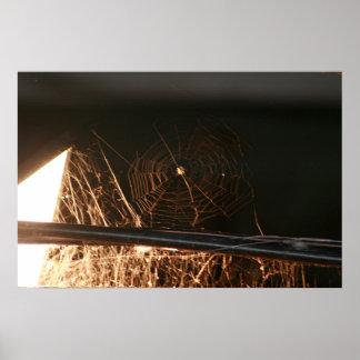 Web de araña en henil póster