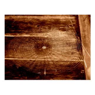 Web de araña en la cerca tarjeta postal
