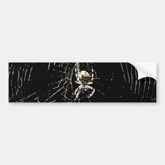 Web de araña en la medianoche etiqueta de parachoque
