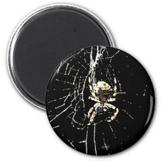 Web de araña en la medianoche imán redondo 5 cm
