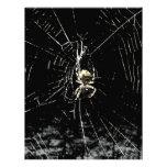 Web de araña en la medianoche membrete