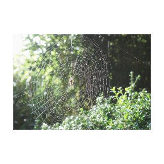 Web de araña impresión en lienzo