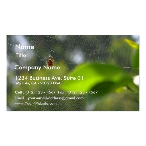Web de araña tarjetas de visita