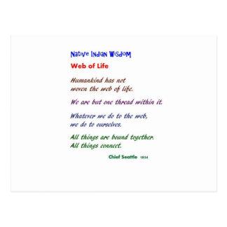 Web de la vida: Sabiduría del nativo americano Tarjetas Postales