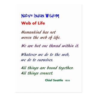 Web de la vida: Sabiduría del nativo americano Postales