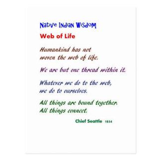 Web de la vida: Sabiduría del nativo americano Postal