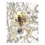 Web del místico del primer de la araña membrete a diseño