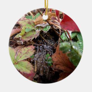 Web of Dewdrops Ceramic Ornament