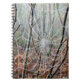 Web of European Garden Spider Photo Notebook