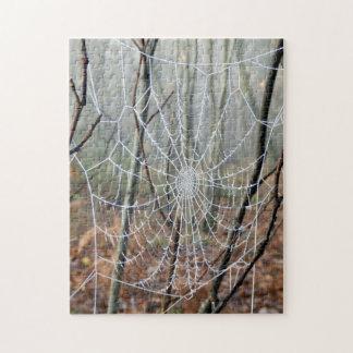 Web of European Garden Spider Photo Puzzle