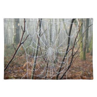 Web of European Garden Spider Place Mats