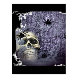 Web, Spiders and Skull Postcard