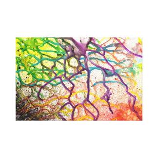 Web vibrante lienzo envuelto para galerías