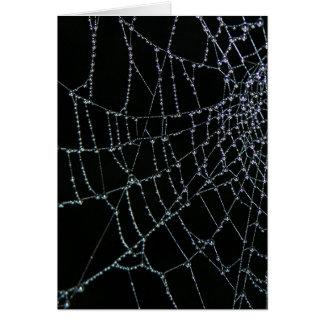 Web Wonder Card