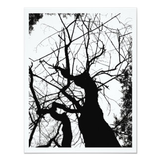 WEBBY TREE BLACK AND WHITE CARD