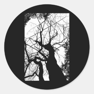 WEBBY TREE BLACK AND WHITE CLASSIC ROUND STICKER