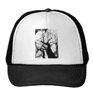 WEBBY TREE BLACK AND WHITE MESH HATS