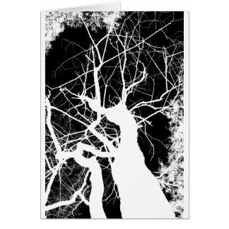 WEBBY TREE BLACK AND WHITE NEGATIVE CARD