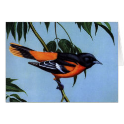 Greeting Card with Weber's Baltimore Oriole design