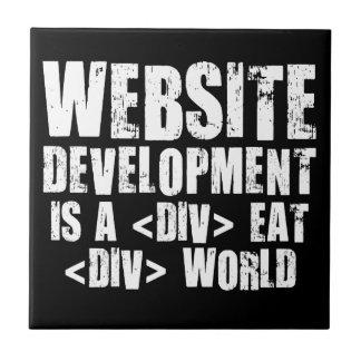 Website development is a competitive career choice ceramic tile