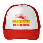 Webster, la Florida Gorras