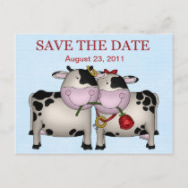 Wedding Cows Save the Date Postcard