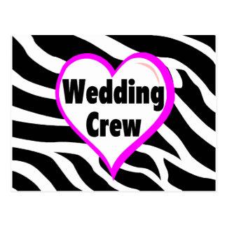 Wedding Crew Zebra Stripes Post Card