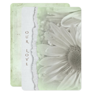 wedding daisy in soft  green with torn paper edge card