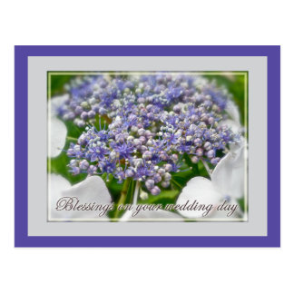Wedding Day Blessings Blue Lace Hydrangea Postcard