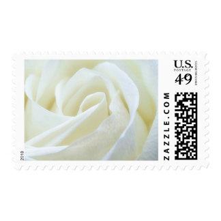 Wedding Elegant White Rose Postage