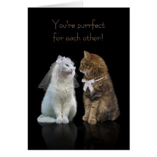 Wedding / Engagement Congratulation For Cat Lovers Card at Zazzle
