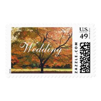 Wedding Fall Wedding Invitation Postage  Stamps
