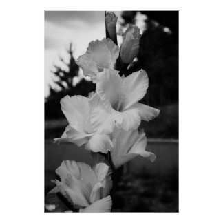 Wedding flower poster