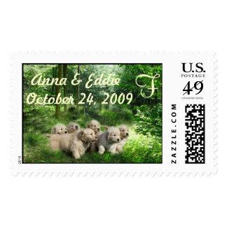 Wedding Golden Retriever Puppies Postage
