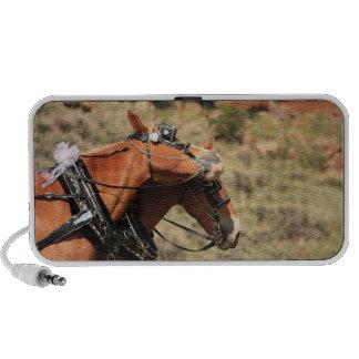 Wedding Horses Portable Speaker