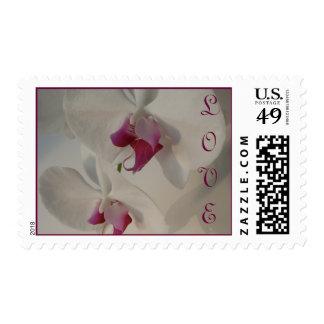 Wedding Invitation Love Orchid, Purple & Cream Stamp