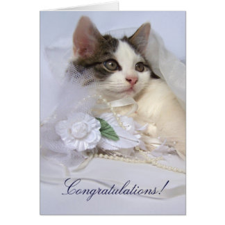Wedding Kitten Card