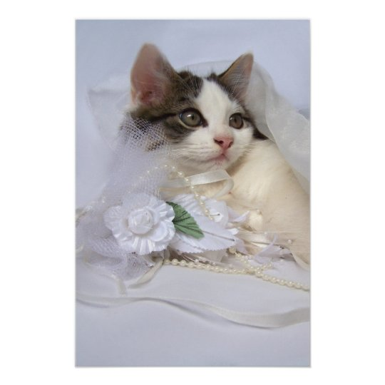 Wedding Kitten Fine Art Print