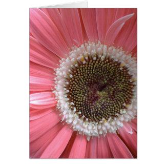 Wedding Pink Gerbera Card